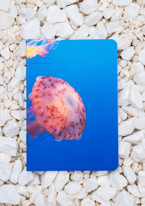 Roca stone paper Notebook - JellyFish